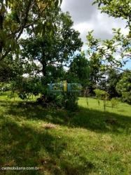 sitio  Gravatai
